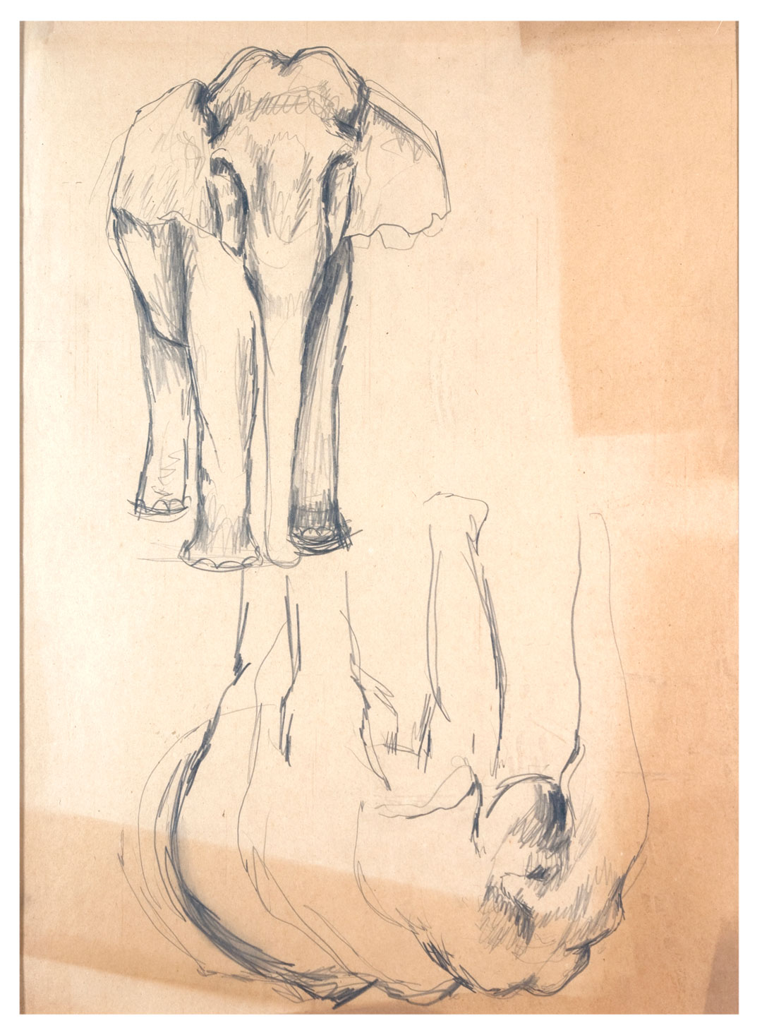 , Pencil on paper, 50.8x38.1cm, 1925, Private Collection